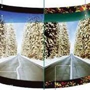 Автостекла, Лобовое стекло, Автомобильные стекла, Боковые стекла. фото