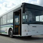 Автобусы городские НЕФАЗ-52997-0000010 фото