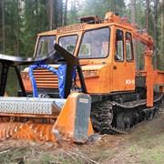 Гусеничный мульчер FERRI TSKF/DTF 2200 на шасси МС фото
