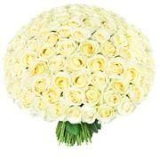 Букет 101 белая роза фото