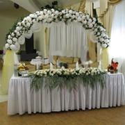 Флористическое оформление офисов, Алматы фото