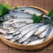 Добавка для рыбы без фосфатов фото