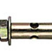 Анкерный болт с крюком *10х50 фото
