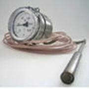 Термометры манометрические фото