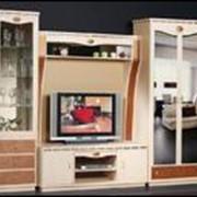"""Мебель для гостиной """"SD-9"""""""