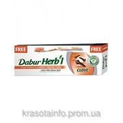 Зубная паста Дабур (Dabur) ГВОЗДИКА, 100 г. фото