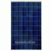 Солнечная панель ABi-Solar SR-P660240 (240 Вт, 24 В) фото