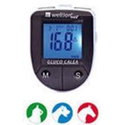 Глюкометр Wellion GLUCO CALEA фото
