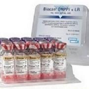 Биокан DHPPi + LR, 1мл фото