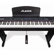 Цифровое пианино Alesis Cadenza фото