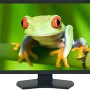 Профессиональный 24-дюймовый монитор MultiSync PA241W фото