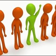 Организация поиска и подбора персонала. фото