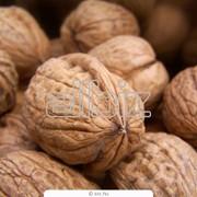 Орехи грецкие в Москве фото