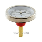 Термометр биметаллический 120°C L=60 50 фото