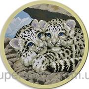 Набор для вышивки картины Тигрята 44х44см 373-37010729 фото