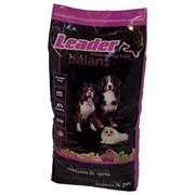 Leader Balans фото