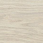 Ламинат Kronostar Galaxy Дуб Вейвлесс белый 32 класс 8 мм фото