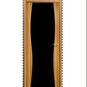 Межкомнатные двери глухие с черной вставкой фото