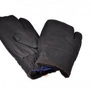 Трехпалый рукавицы фото
