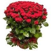 Букет цветов заказать, купить, цена фото