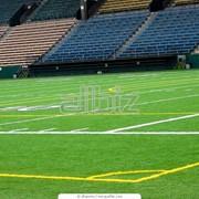 Аренда футбольного зала фото