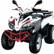 Квадроцикл SYM QuadLander 300 фото