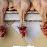 Субпродукт куриный фото