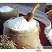 Мука пшеничная. фото