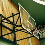 Щит баскетбольный игровой с фермой фото