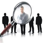 Поиск и подбор персонала, Организация поиска и подбора персонала всех уровней. фото