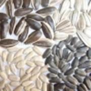 Семена пищевые разные