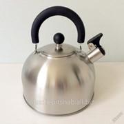 Чайник Катунь 3,2л матовая полировка фото