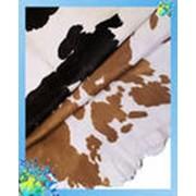 Закупка кожевенного сырья фото