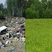 Экологическое нормирование выбросов вредных веществ, отходов. Подготовка документов для получения лимитов на образование и размещение отходов. фото