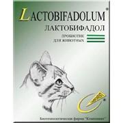 Пробиотик для кошек фото