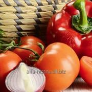 Овощь свежий Alfa-Nistru фото