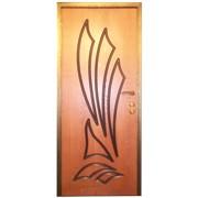 Дверь 200 x 80 см фото