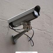 Цифровая система видеонаблюдения фото