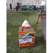 Аттракционы парковые Брилиантовая рука доставка по Казахстану фото
