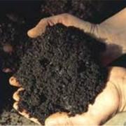 Удобрения торфяные для сельского хозяйства фото