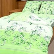 Ткань постельная Бязь 100 гр/м2 220 см Набивная цветной/S041 TDT фото