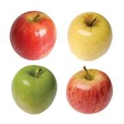 Летние яблоки на экспорт Гала Роял, Гала Барон фото