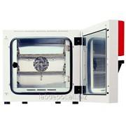 Инкубатор/термостат микробиологический с принудительной конвекцией ВF400 фото