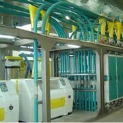 Мельницы турецкие мукомольные высокотехнологичные от 15 до 500 тонн в сутки фото