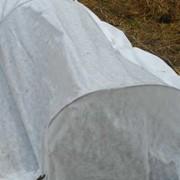 Агроспан шир. 3,2м фасовка 10 м фото