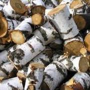 Первичное дробление древесины фото