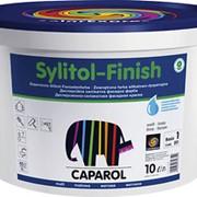 Модифицированная дисперсионно-силикатная фасадная краска Sylitol-Finish фото