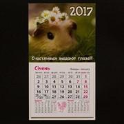 Календарь - Магнит 2017 / Морская Свинка x01015 фото