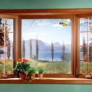 Окна ламинированные фото