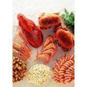 Мидии, креветки, кальмары и прочие морепродукты. фото